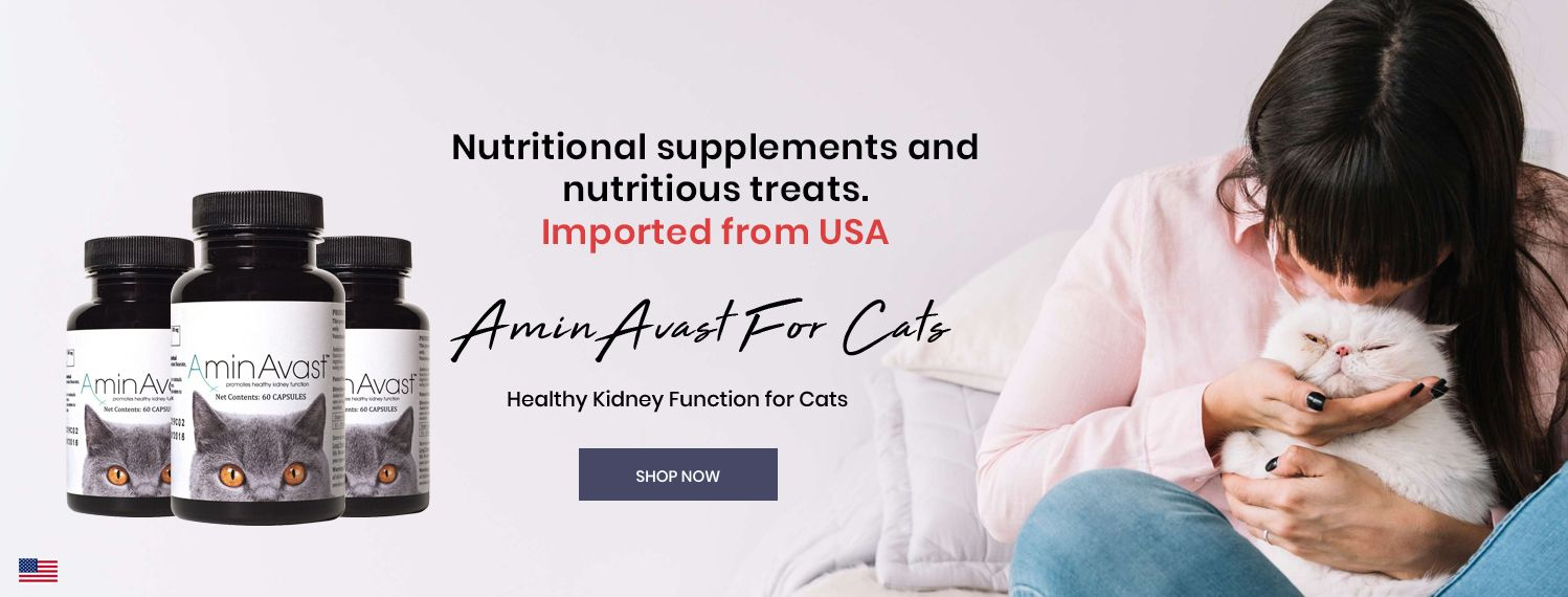 Kidney Support Supplement for Cats